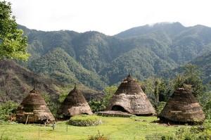 kampung waerebo Flores